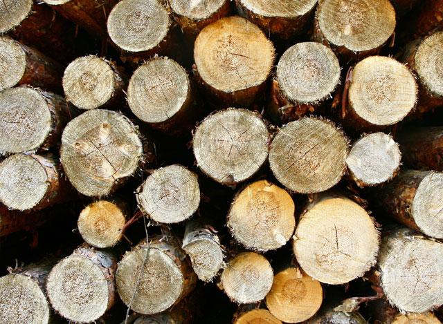 环保的燃木材料.jpg